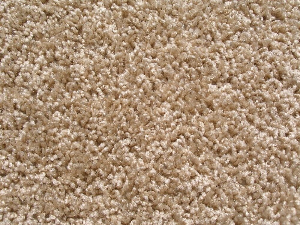 Taffy Apple Indoor Frieze Area Rug Carpet
