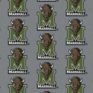 Marshall Thundering Herd Area Rug