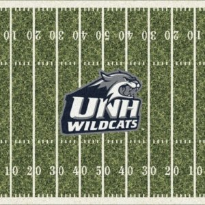 New Hampshire Wildcats Area Rug