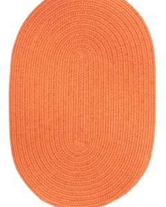 Rhody Mango Braided Area Rug
