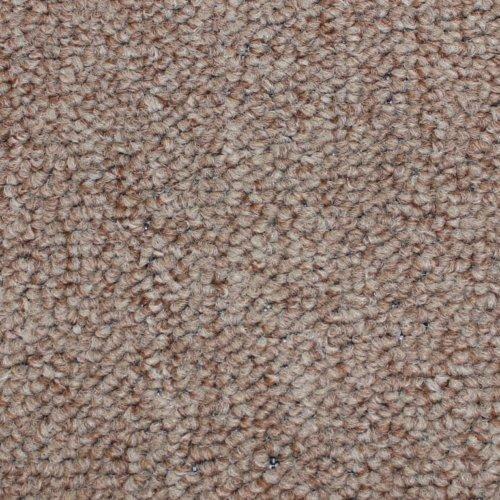 Sage Brush Indoor-Outdoor Area Rug Carpet