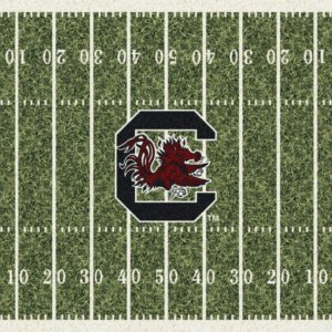 South Carolina Gamecocks Area Rug