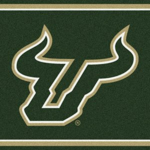 South Florida Bulls Area Rug