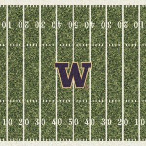 Washington Huskies Area Rug