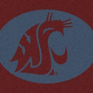 Washington State Cougars Area Rug