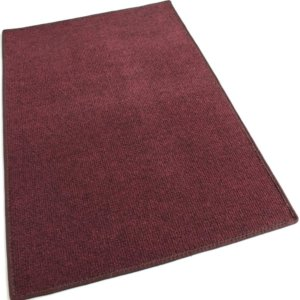 Brick Red Indoor-Outdoor Olefin Carpet Area Rug