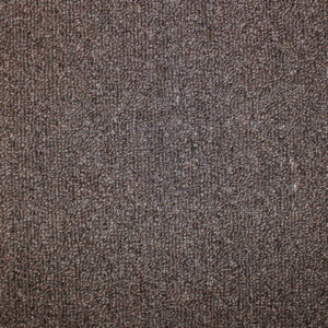 Hickory Indoor-Outdoor Area Rug Carpet