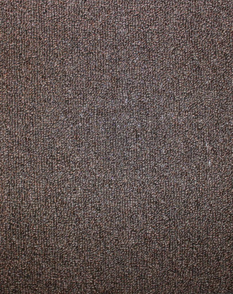 Hickory indoor outdoor area rug carpet for Indoor out door carpet