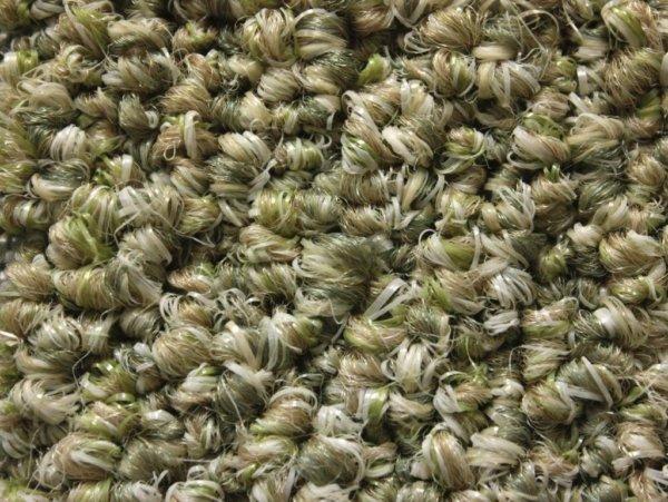 Natural Path Seedling Level Loop Indoor-Outdoor Area Rug Carpet