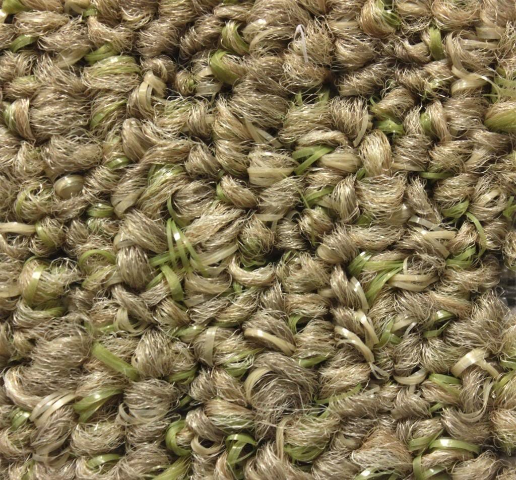 grass color area rug