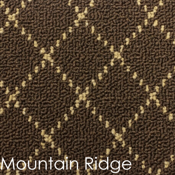 Ansley Park DOG ASSIST Carpet Stair Treads Mountain Ridge
