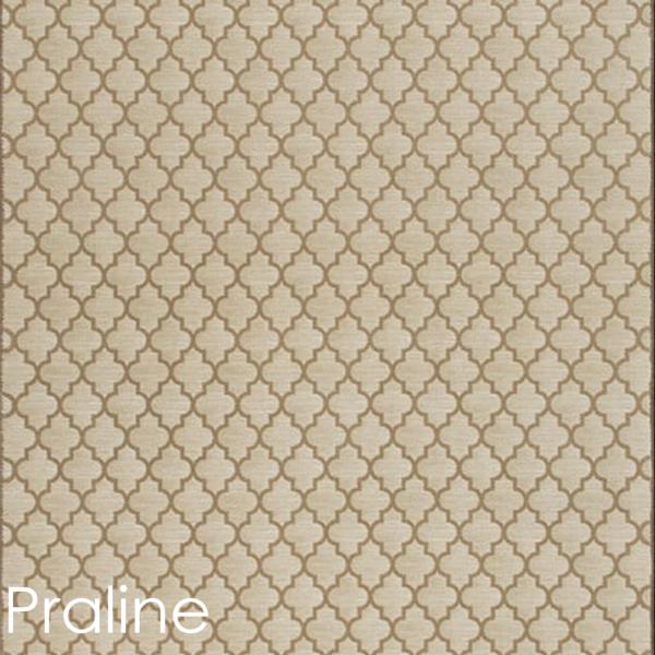 praline color rug