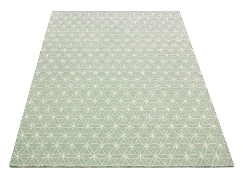 aquatic color area rug