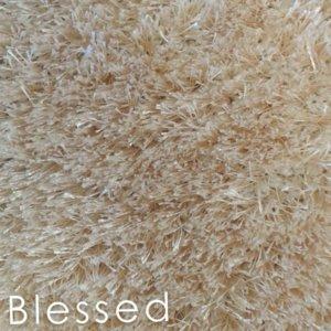 Kane Applause Blessed shag area rug