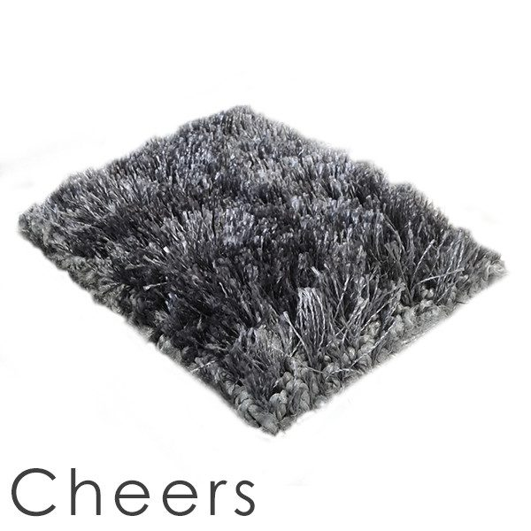 Applause Cheers shag area rug