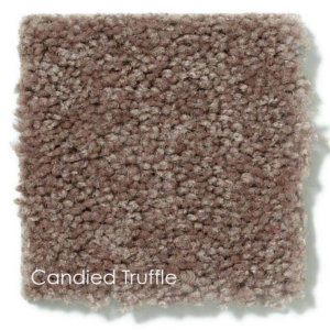 Neutral Tones DOG ASSIST Carpet Stair Treads Candied Truffle
