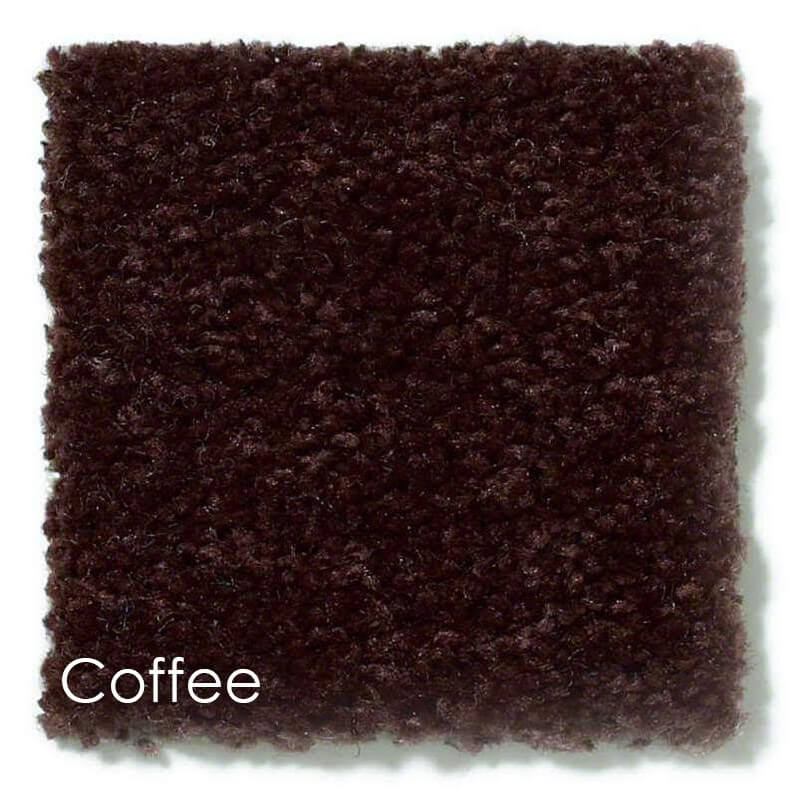 Dyersburg Cut Pile Indoor Area Rug Collection Coffee
