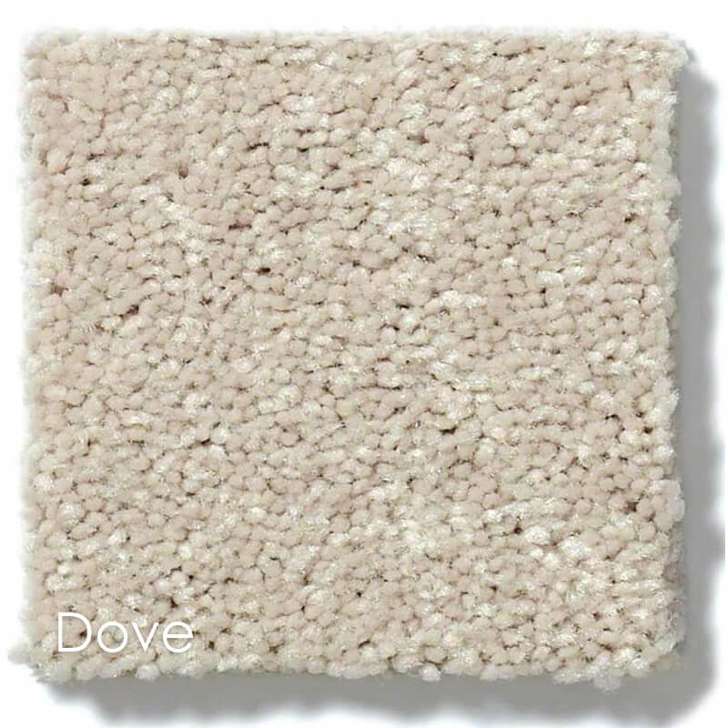 Dyersburg Cut Pile Indoor Area Rug Collection Dove