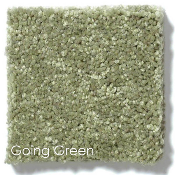 Dyersburg Cut Pile Indoor Area Rug Collection Going Green