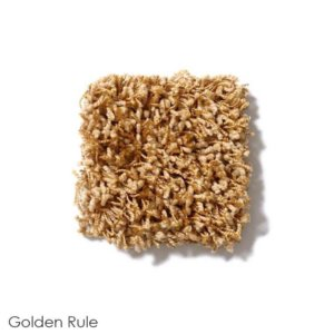 Uptown Girl Indoor Shag Carpet Area Rug Collection Golden Rule