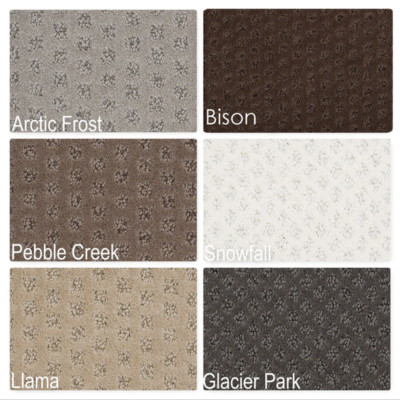 My Expression Pattern Repeat Indoor Area Rug Collection