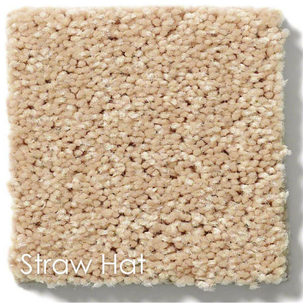 "Dyersburg Cut Pile Indoor Area Rug Collection | 1/2"" Thick 30 oz. Durable Cut Pile Indoor Area Rug Multiple Colors Straw Hat"