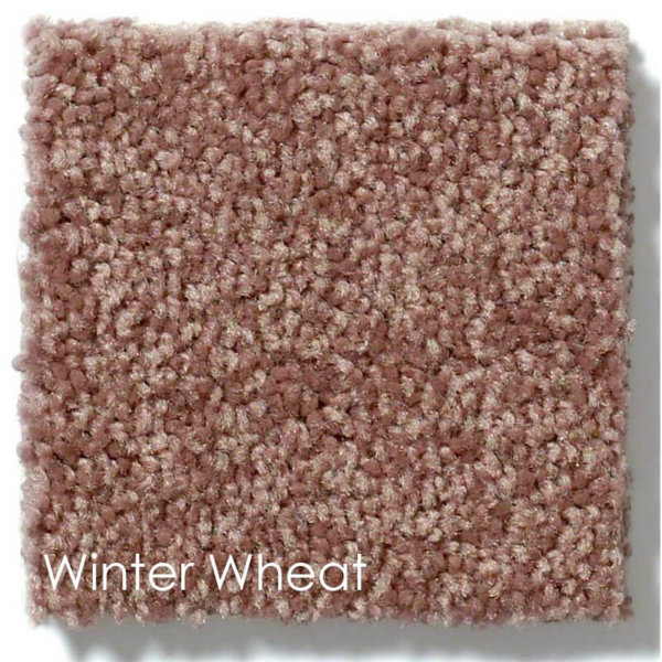 "Dyersburg Cut Pile Indoor Area Rug Collection | 1/2"" Thick 30 oz. Durable Cut Pile Indoor Area Rug Multiple Colors Winter Wheat"