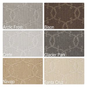 Your World Pattern Repeat Indoor Area Rug Collection