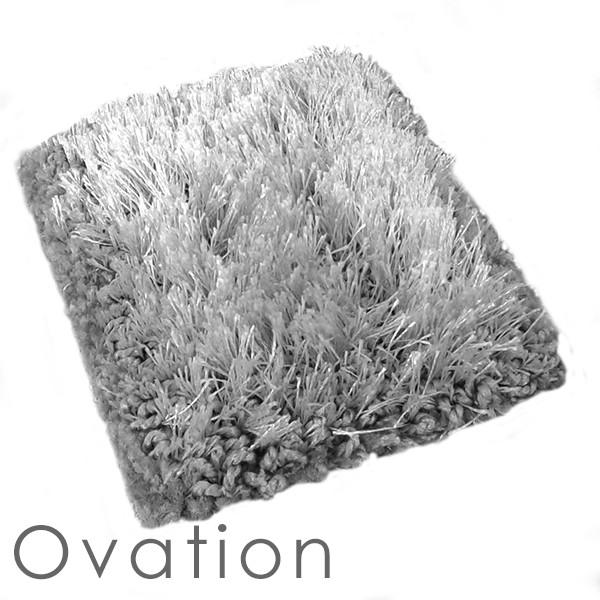 Applause Ovation Shag area rug