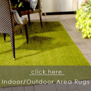 Indoor/Outdoor Area Rugs