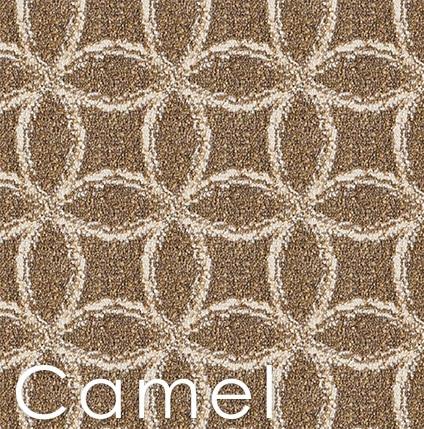 Camel Frienze