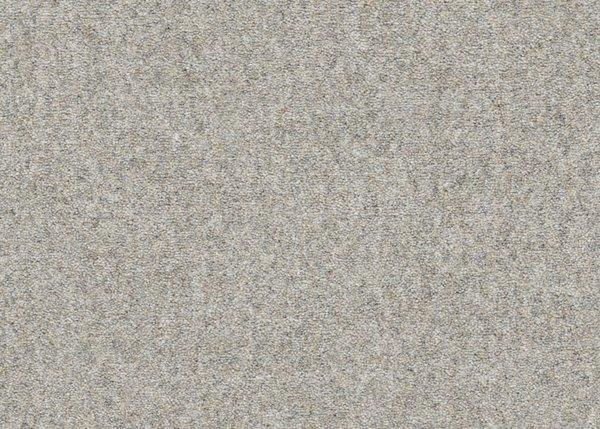Grey Hibiscus