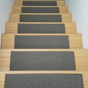 Buena Vista Level Loop DOG ASSIST Stair Treads