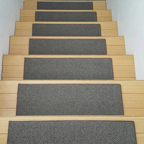 Buena Vista Level Loop DOG ASSIST Stair Treads