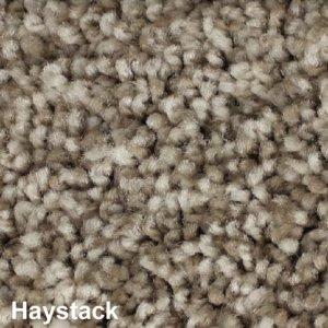 West Brow Indoor Frieze Area Rug Collection Haystack