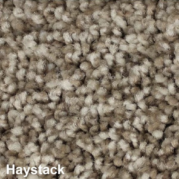 West Brow Indoor Frieze Area Rug Collection Haystack