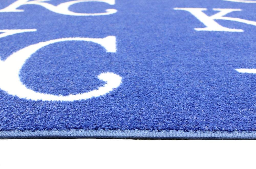 Indoor Outdoor Area Rug Carpet