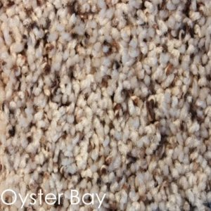 Toast of the Town Frieze Stair Treads DOG ASSIST Carpet Oyster Bay