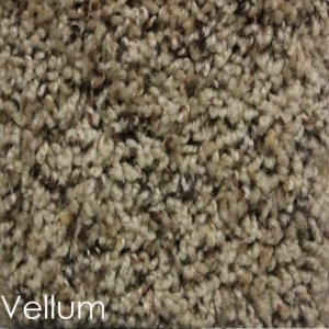 Toast of the Town Frieze Stair Treads DOG ASSIST Carpet Vellum