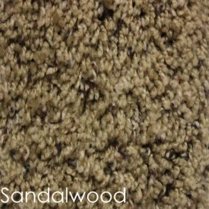 Toast Of The Town Indoor Plush Area Rug Collection Sandalwood