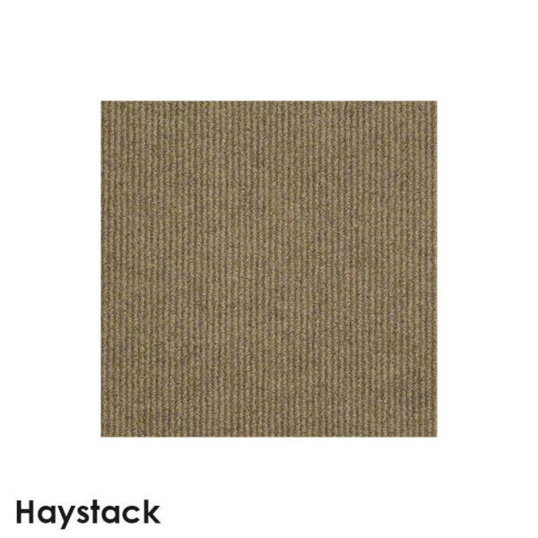 Summerstock Indoor-Outdoor Area Rug Carpe