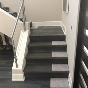 Neutral Tones DOG ASSIST Carpet Stair Treads
