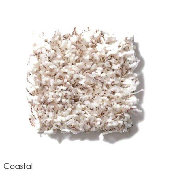 Uptown Girl Berber Tweed Indoor Shag Carpet Area Rug Collection Coastal