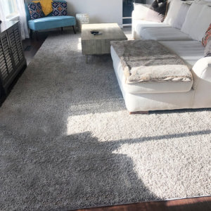 Lazy Day Grey Twisted Frieze Area Rug Carpet Rug customer photo