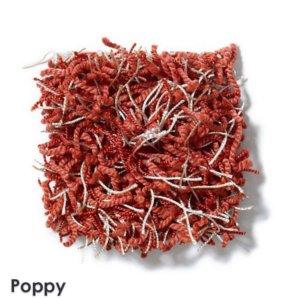 Poppy Bling
