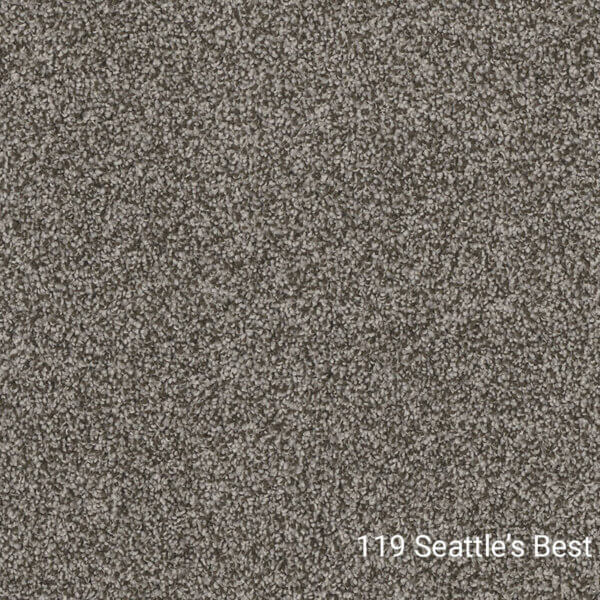 Double Jump I – Indoor Area Rug Collections - 119 Seattles Best