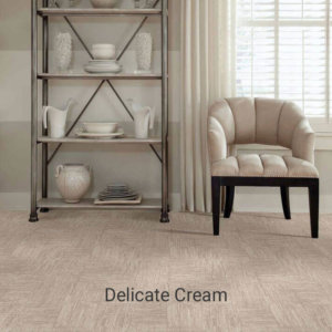 Insightful Journey Collection Delicate Cream ShowRoom