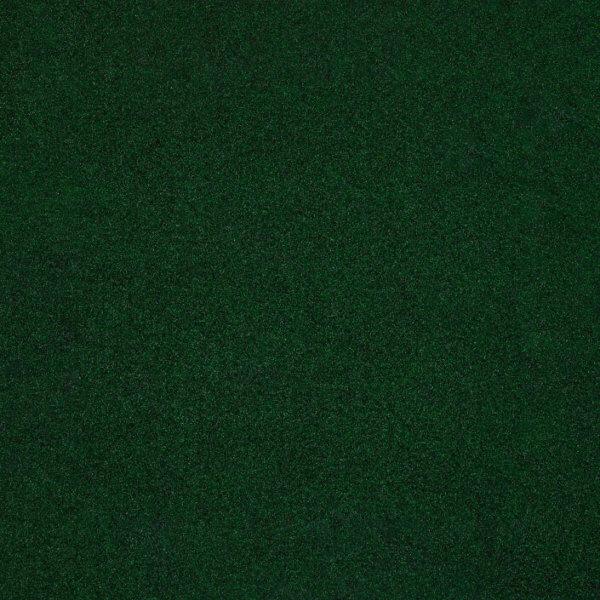 Valdosta Indoor-Outdoor Durable & Soft Carpet Area Rug | Green