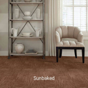 Insightful Journey Collection Sunbaked ShowRoom