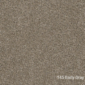 Double Jump I – Indoor Area Rug Collections - 145 Early Gray